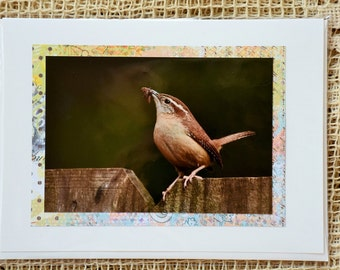 Wren note card, 2