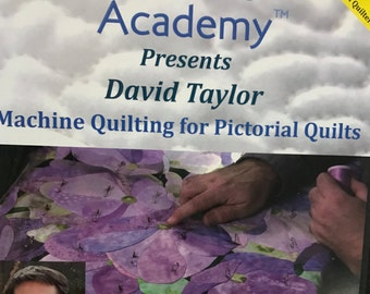 Quilter's Academy presents David Taylor: Machine Quilting for Pictorial Quilts (for sit-down quilters) - DVD