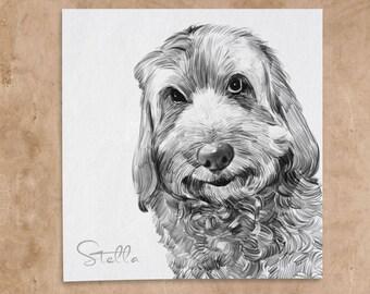 Custom Pet Drawing in Pencil. Pet Portrait Drawing. Pet Memorial. Pet Art. Pet Loss Gifts. Personalized Pet Memorial Gifts.