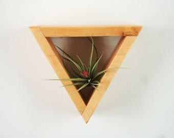 Floating Shelf, Wood Floating Shelf, Wooden Shelves, Succulent, Hanging Planter, Airplant, Airplaint Holder