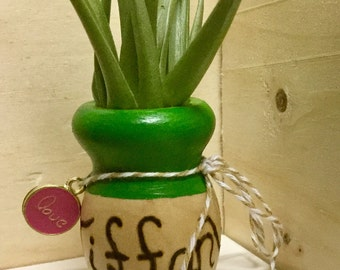 woodburned name mini vase and airplant, Long Distance Gift, Unique Birthday Gift, Thank You Gift, Best Friend Gift, Air Plant