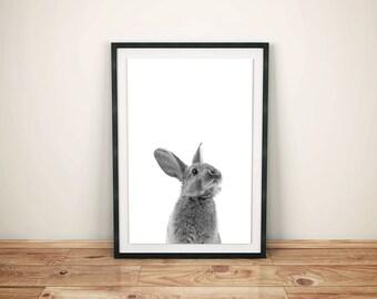 Childrens Woodland Bunny Art-Woodland Baby Bunny Print-Nursery Baby Bunny Print-Printed Bunny Art-Woodland Bunny Prints-Woodland Bunny Art