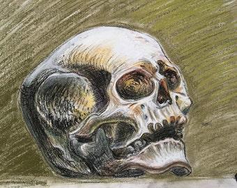 Death's head, Skull