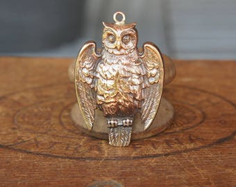 Vintage French Brass Stamping/Antique Style/Art Nouveau/Owl/Woodland/Wisdom/French Findings