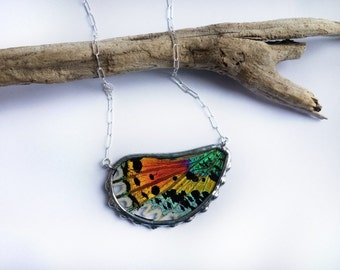 Bright Rainbow Sunset Moth Wing Necklace - natural history relic pink yellow orange green butterfly wing pendant jewelry READY TO SHIP