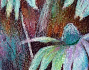 original art  aceo drawing cone flowers floral