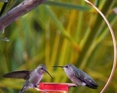 Bee-Proof Drip-Free Copper Hummingbird Feeder II