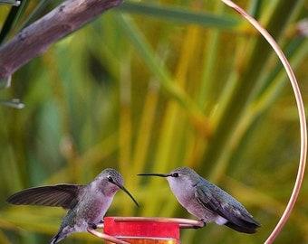 Bee-Proof Drip-Free Copper Hummingbird Feeder II