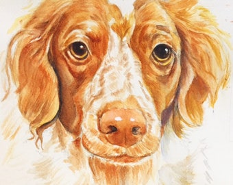Dog Portrait Custom Watercolor