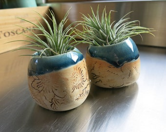 Small Handmade Ceramic Potted Airplant Tillandsia One of a Kind Gift Idea Home Decor Live Plant, Artisan Pottery by Licia Lucas Pfadt
