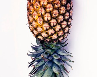 PINEAPPLE Photo, Upside Down Pinepapple Photo, Food Photography, Pineapple, La Pina, Fruit Art, Minimalism, Tropical, Kitchen Art Photo,