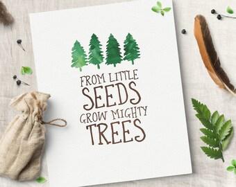 Woodland Nursery - From Little Seeds Grow Mighty Trees - Wall Canvas - Baby Boy - Rustic Boy Nursery - Camping Nursery - Cabin Nursery