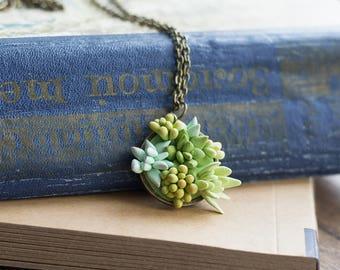 Terrarium necklace - terrarium pendant - plant jewelry - succulent necklace - succulent gift - botanical pendant - floral nature pendant