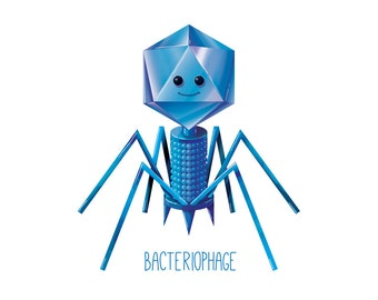 Bacteriophage Friendly / Virus / Wall art print / biology / cute / fun / science / poster  / geek / nerd / nursery / kids science