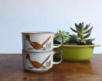 Otagiri Roadrunner and Cactus Soup Bowl Set of 2 / Hand Painted / Japanese style