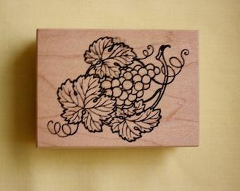 Grapevine Branch Rubber Stamp /Stampa Rosa