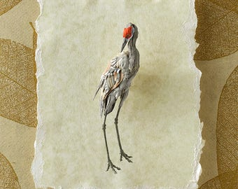 Blank Card - 'Solitude' - Sandhill Crane Paper Sculpture, Print