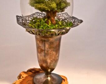 Tree terrarium, beautiful moss terrarium- hand sculpted miniature tree by uniqueleeart