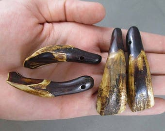 3 Buffalo Teeth with Hole - Raw Crystals, Energy Healing, Jewelry Making Supply, Healing Crystals and Stones, Dream Catcher Supply 0050