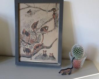 SALE - Tree Kangaroos framed screen print - illustrated screenprint - animal art - hand printed silk screen art - tree kangaroo illustration