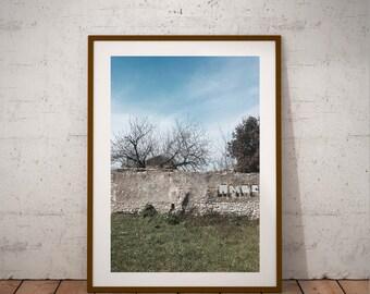 """Ile de Ré photography, La Flotte en-Ré, """"Chemin de traverse"""", French Atlantic Coast, 15 cm x 20 cm,  6"""" x 8"""""""