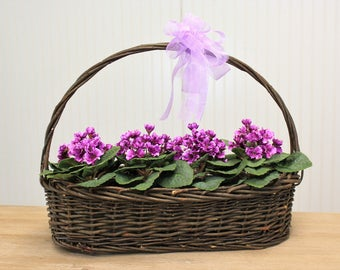 Large Spring Purple Violets Silk Flower Arrangement In Basket With Bow