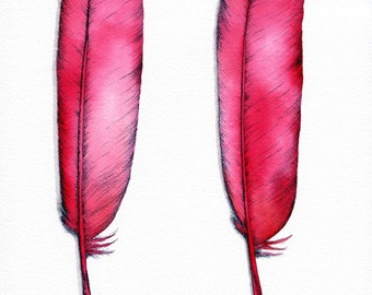 Bold print - watercolour - A4/A5 print - original feather painting