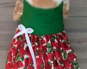 Strawberry Rabbit Dress
