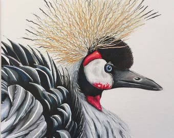 Original coloured pencil drawing. Crested crane. Free UK delivery.