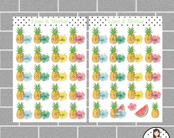 Tropical Paradise Summer Holiday Countdown Planner Stickers