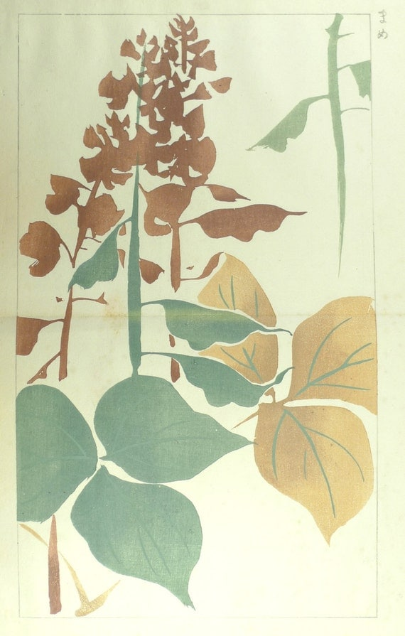 "1910, Japanese antique woodblock print, Ogino Issui, ""Zuan Hyakudai"""
