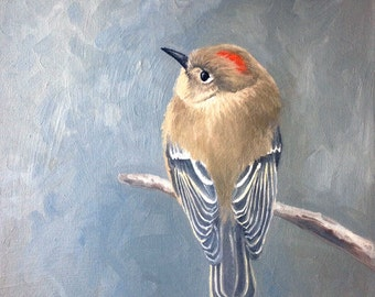 Ruby-crowned Kinglet oil painting of a song bird by Canadian Artist Kindrie Grove