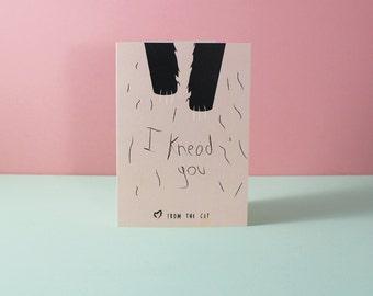 I knead You - Valentines Cat Card