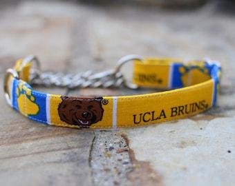 UCLA Bruins Collar | Dog Collar | Male Dog Collar | Female Dog Collar | Sports Dog Collar | Pet Collar | Large Dog Collar | Small Dog Collar