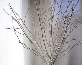 White Birch Twigs, Set Of 12 Hand Painted Birch Branches, Original Vase  Filler,