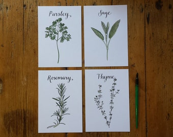 Herb themed Art Prints featuring Parsley, Sage, Rosemary and Thyme illustrations and hand lettering by Alice Draws The Line; A5 Prints