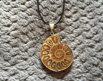 Sea Fossil Pendant Necklace