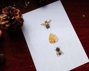 Woodland Series: Bee & Hive A6 Illustration Print
