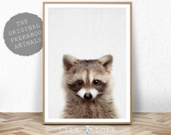 Raccoon Print, Baby Animal, Woodland Animals Wall Art, Nursery Decor, Baby Shower, Digital Download, Large Printable Poster, Forest Animals