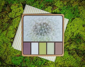 Dandelion Spring Palette greeting card