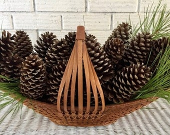 """Box of 12 (3""""-5"""") Alabama Loblolly and Long Leaf Pine Cones"""