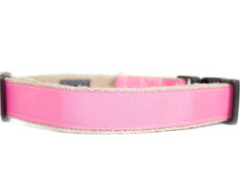 Dog collar / leash CLASSIC PINK