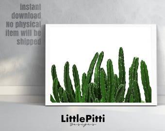 Cactus photo print, aztec decor, botanical print, succulent print, desert photography, western print, printable cactus, printable download