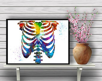 Colorful Human Chest Skeleton, Biology, Watercolor Room Decor, Science, Anatomy, Wall Hanging, Home Decoration, gift, print (364)
