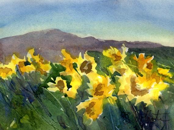 Balsam Root #23 - original watercolor painting - Bonnie White - B White - Hood River - Columbia River - Columbia Gorge