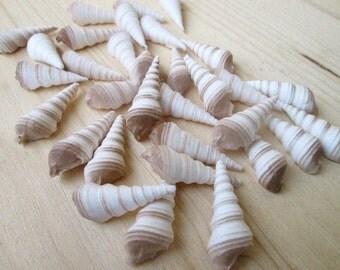 Fondant Tower Of Auger (30) - 3D fondant seashells - edible seashells - sugar seashell decorations - beach wedding cake - gumpaste seashells
