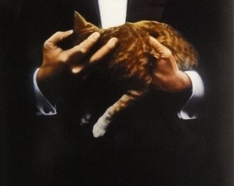 The Godfather 17x38 Brando W/ Cat Video Release Movie Poster 1991 Marlon Brando
