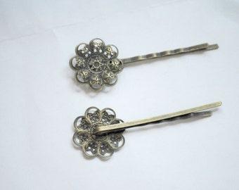2 hair clips hair clip