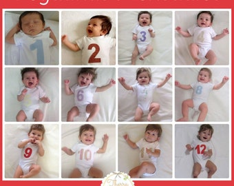 12 monthly stickers for baby photo, stickers of baby month (made in fabric)
