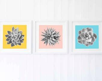 Interior trends 2017, succulent wall art, Summer wall decor ideas, color pop wall decor colour block, set of three prints, set of 3 prints